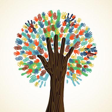 أنواع الشركات الإجتماعية